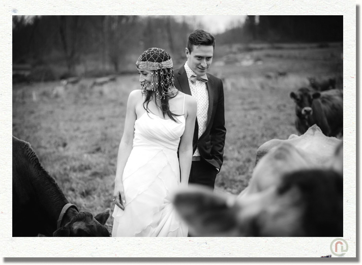 scranton_wedding_photographer_hillside_farm_32.jpg