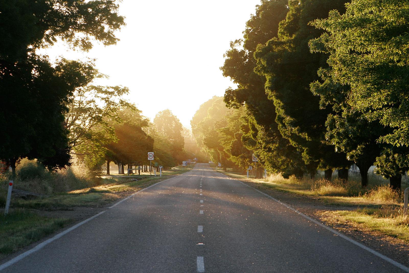 The road forward.jpg