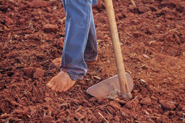 person-plowing-soil-1615784.jpg