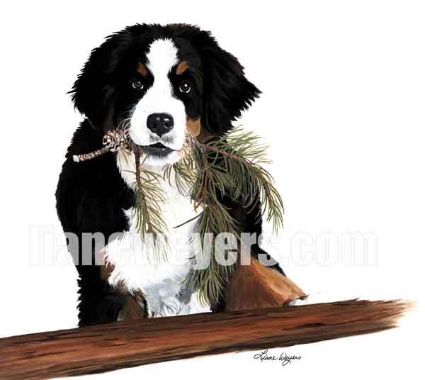 Lumberjack_WM_web.jpg