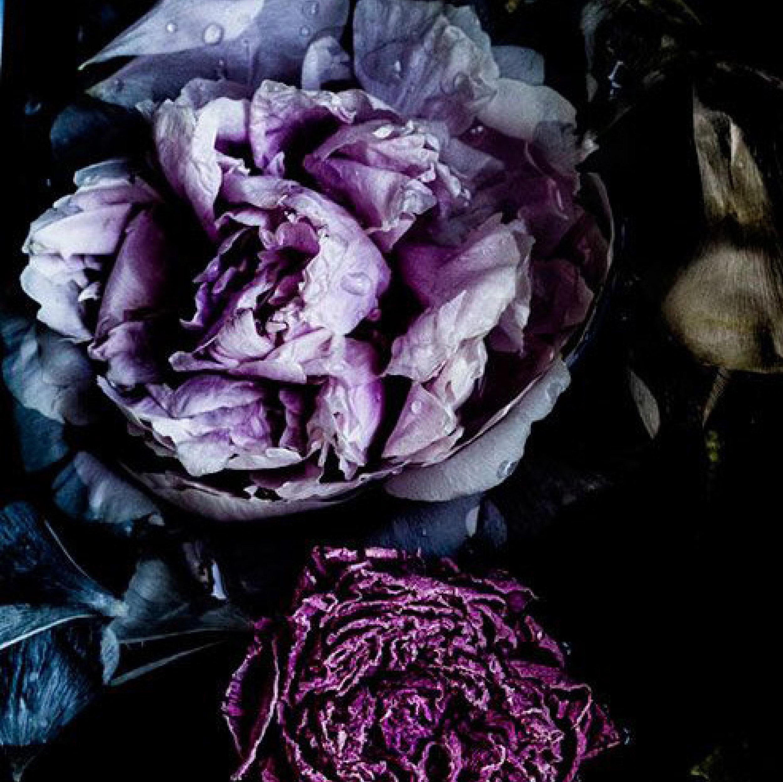 floral_1.jpg