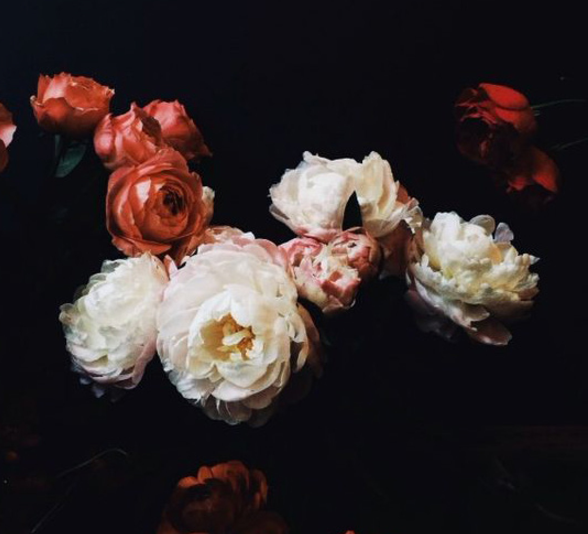 floral_4.jpg