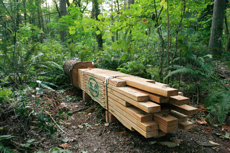 Lumber-Unit_The-Source-Series_imonen-8795.jpg