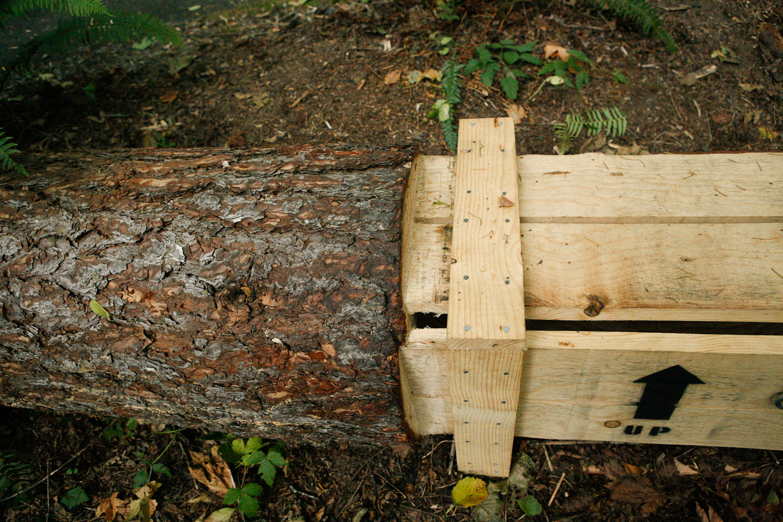 Pine-Box_The-Source-Series_imonen-8799.jpg
