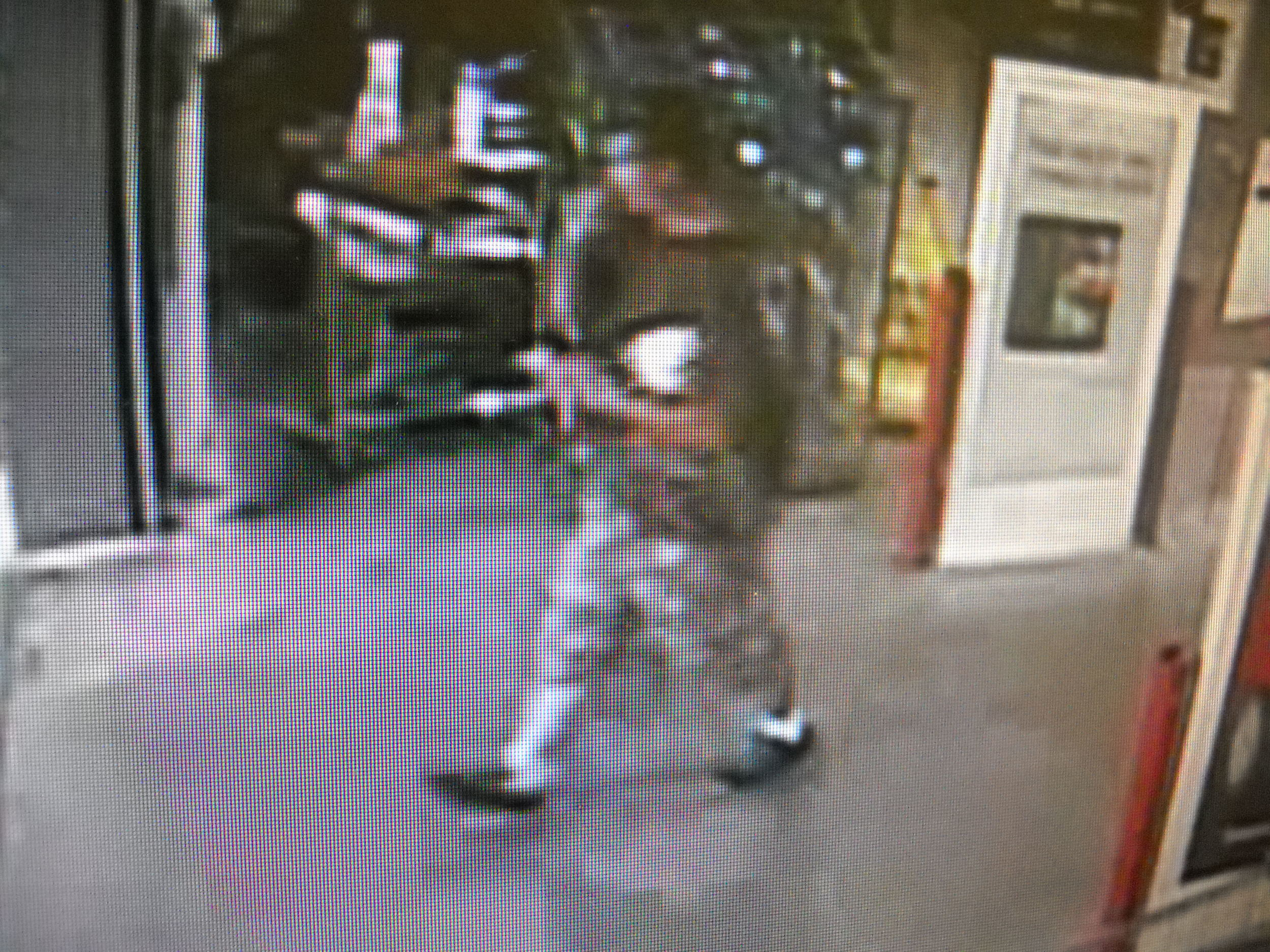 """PHOTO: Video surveillance shows a white male in his mid-twenties to early thirties, with a thin build, and average height (5`9""""- 6`0""""). The male had short brown hair and was wearing sunglasses on top of his head. He was wearing a light gray or brown t-shirt and long camouflage shorts of the same color with white socks and black shoes.. (Photo Courtesy ofCape Coral Police Department)"""