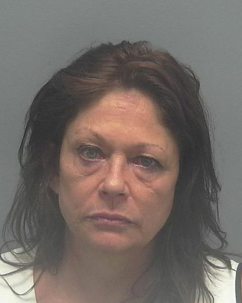 ARRESTED: Nina Elizabeth Trammell, W/F, DOB: 8-6-62, of 2462 Vermont Court,Cape Coral FL. - CHARGES: Driving Under the Influence
