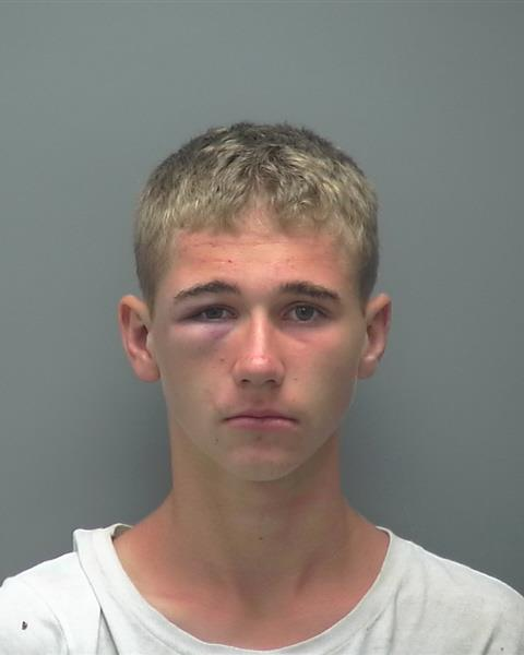ARRESTED: Zachary James Busenbark, W/M, DOB: 09/26/2003, of Cape Coral - CHARGE: Armed Burglary of a Dwelling, 2-counts of Grand Theft Firearm, Petit Theft, 4-counts of Vehicle Burglary, and Resisting a Law Enforcement Officer without Violence