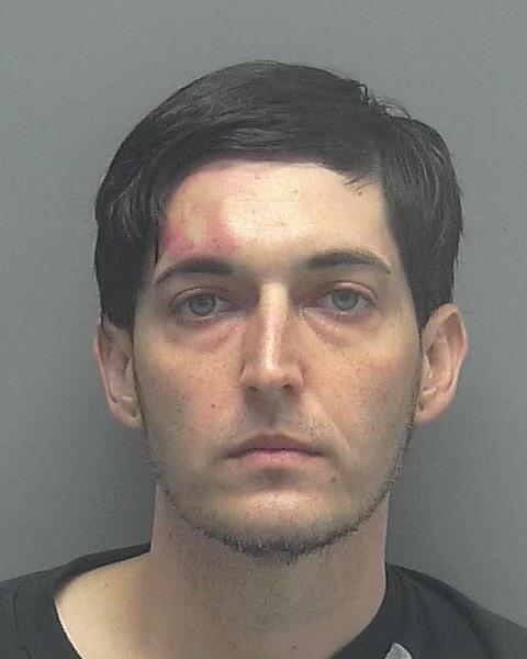 ARRESTED: Andrew Wilson Reagan, W/M, DOB: 11/30/1986, of Cape Coral - DUI