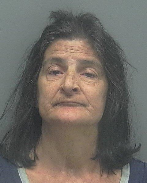 ARRESTED: Cheryl Rene Peters, W/F, DOB: 09/30/1962,3621 Pelican Blvd - CHARGES: DUI with a BAC Over .15, Driving While License Suspended, and Resisting Arrest without Violence