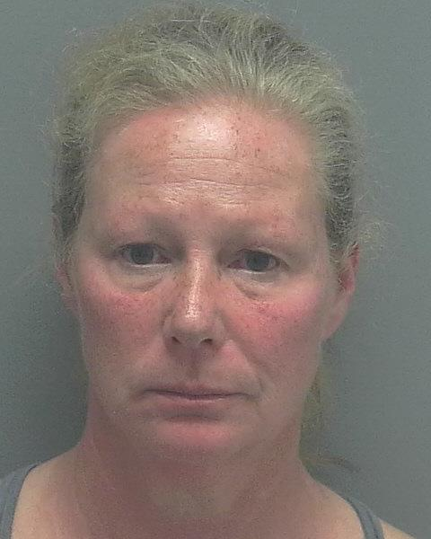 ARRESTED: Patricia Ann Cross, W/F, DOB: 11/09/1966, of 13275 Whitehaven Lane, Fort Myers FL. - CHARGES: DUI and DUI with Property Damage
