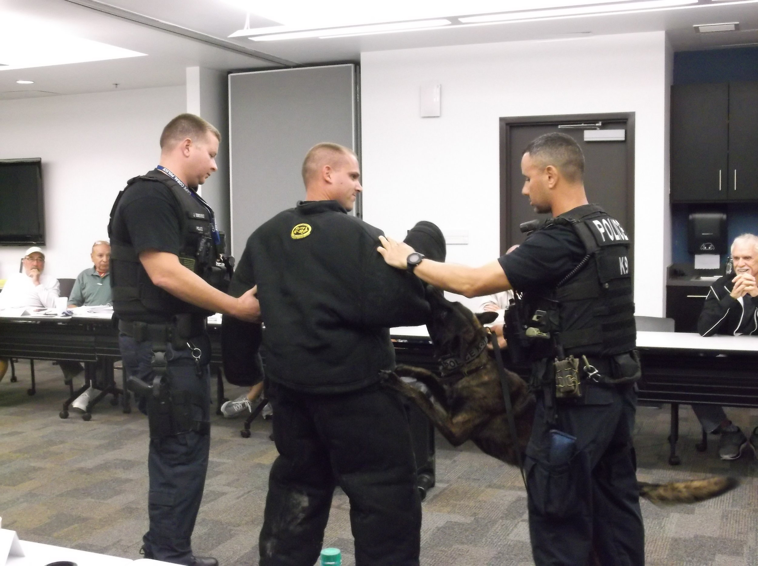 "K-9 Sgt. Derosso and K-9 Officers Deberardinis and Aponte demonstrate the ""bite-suit."""