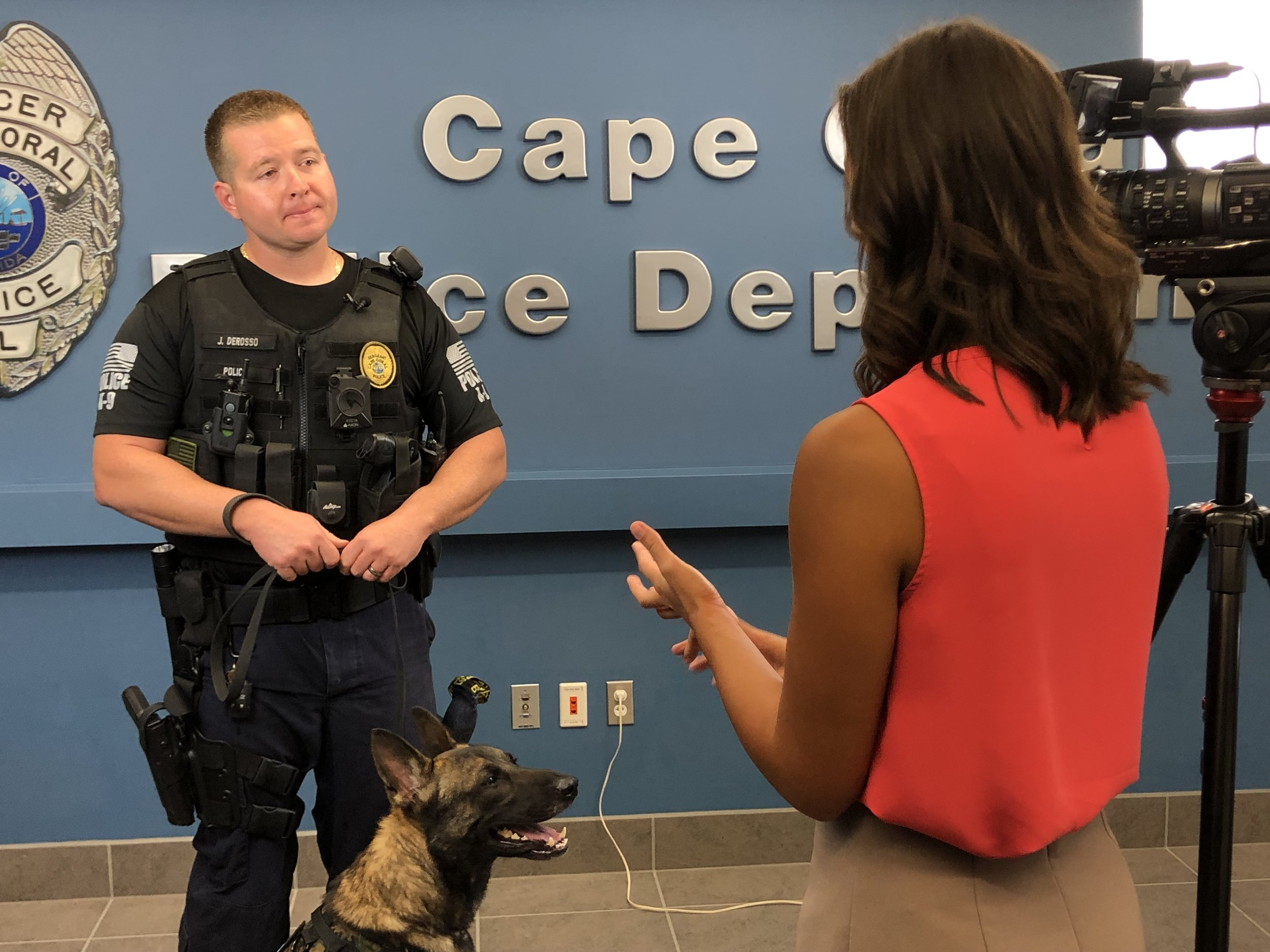 K9 Unit Sgt. Derosso speaks with WINK News, while K9 Dallas mugs for the camera.