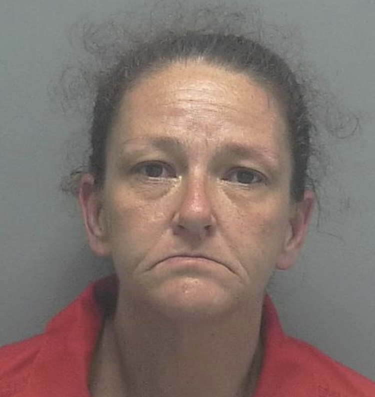ARRESTED:  Denise R. Maggi, W/F, DOB: 9-4-79  CHARGES:  Tampering With Evidence, Mishandling Human Remains, Failure to Report Death