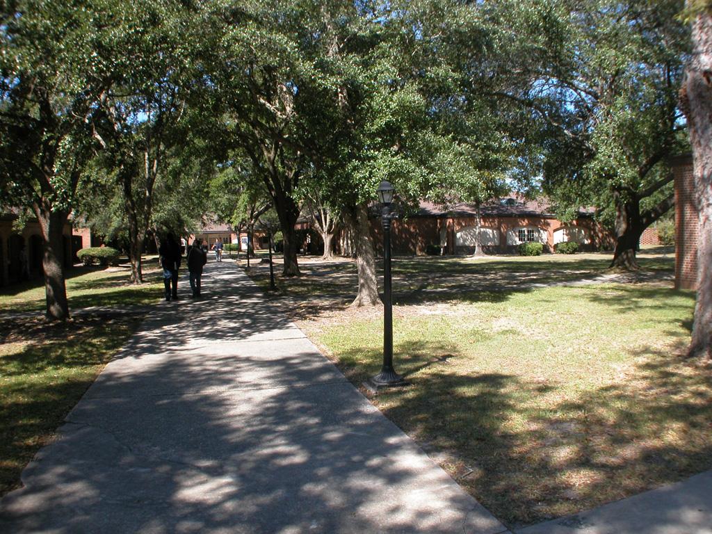 Exterior View of Campus