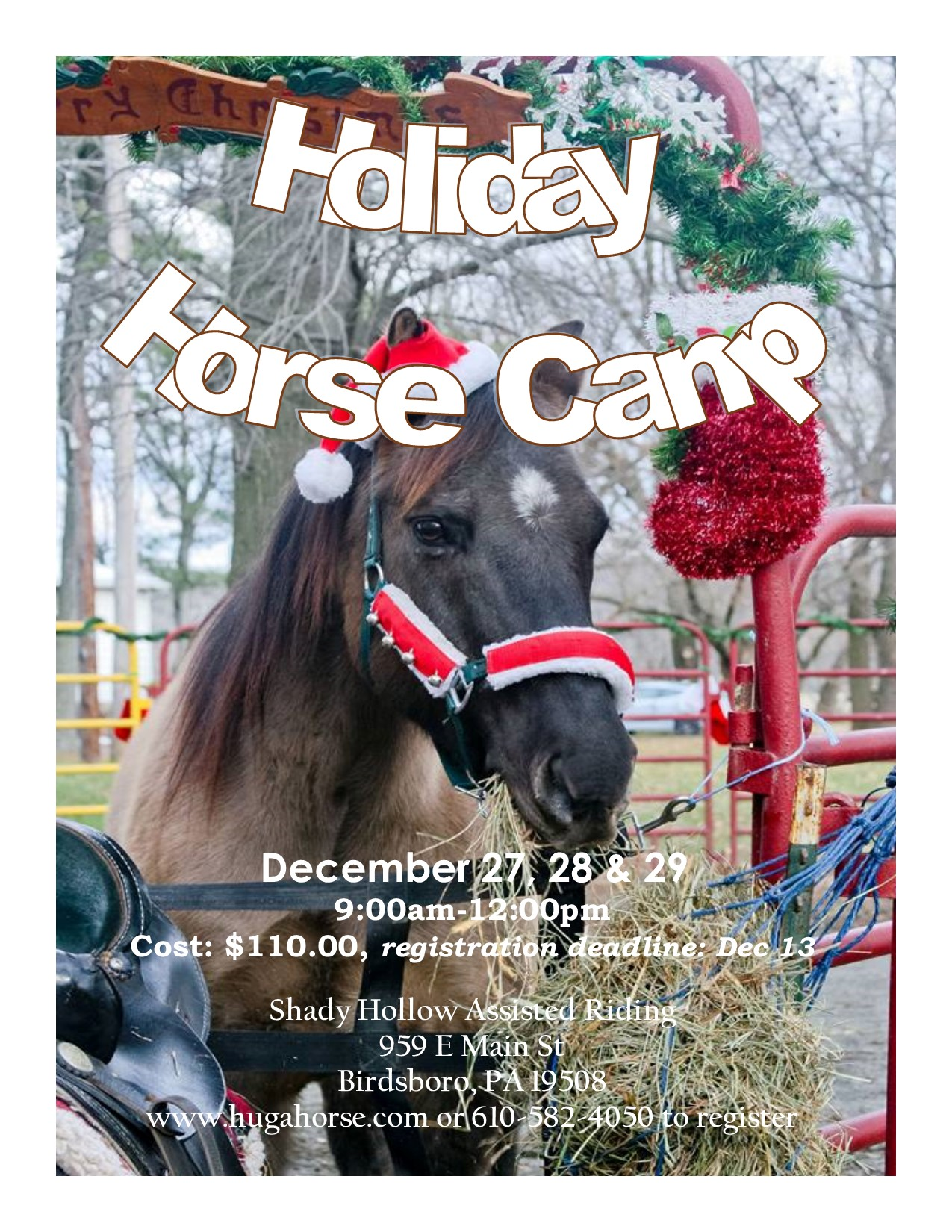 Holiday Horse Camp Shady Hollow Assisted Riding