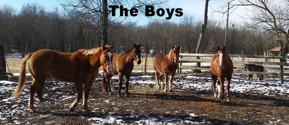 the boys 2018.jpg