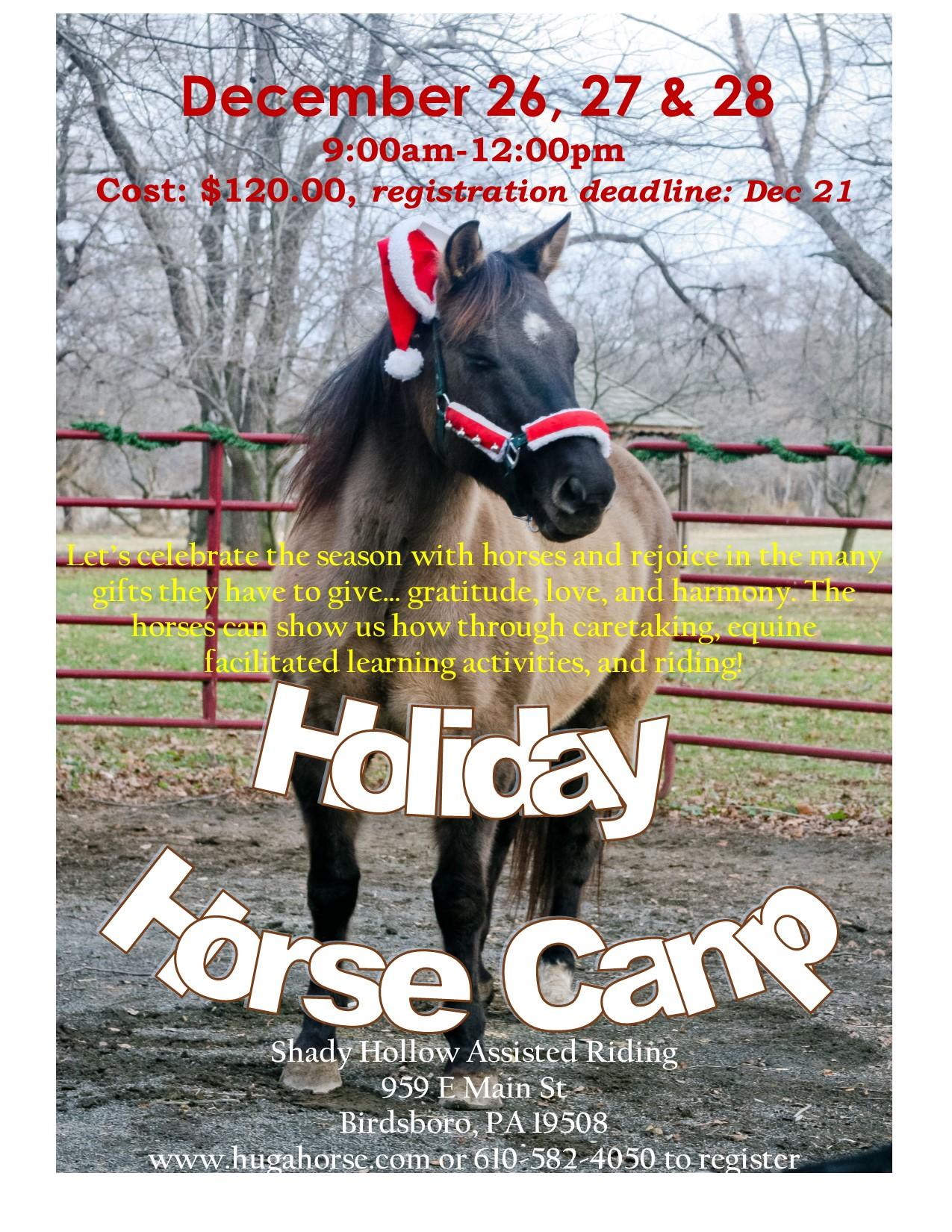 holidayhorsecamp2018.jpg