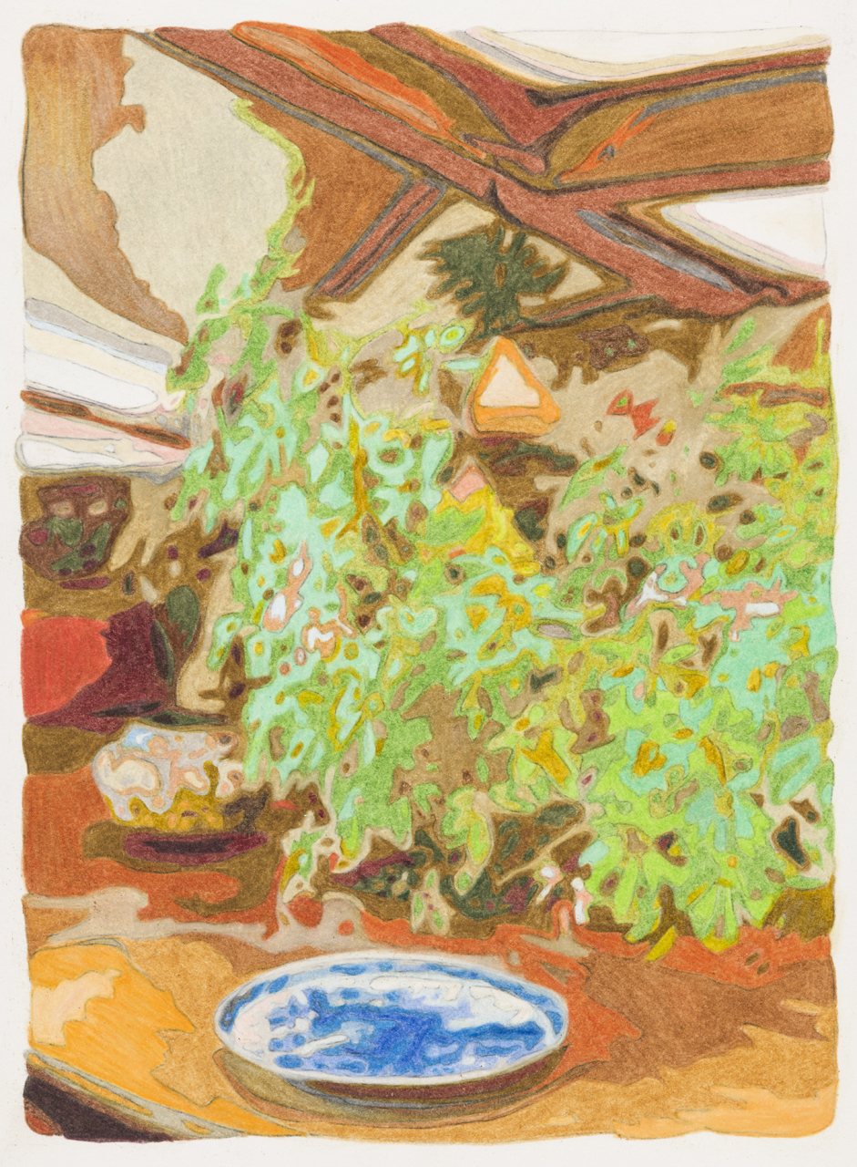 Plate, plant and pot, Taliesin West,  colored pencil on paper, 10 x 8 inches, 2018.  Photography by    Paul Takeuchi