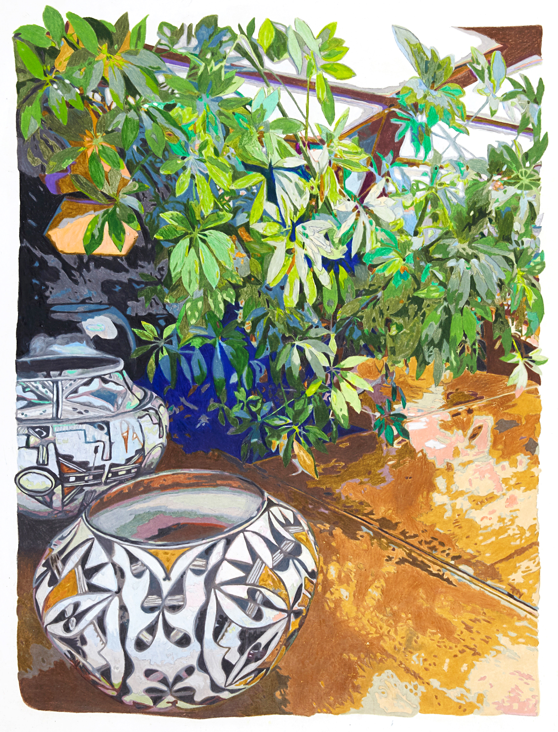 Pots and plants, Taliesin West , colored pencil on paper, 24 x 19 inches, 2019.  Photography by    Theo Coulombe