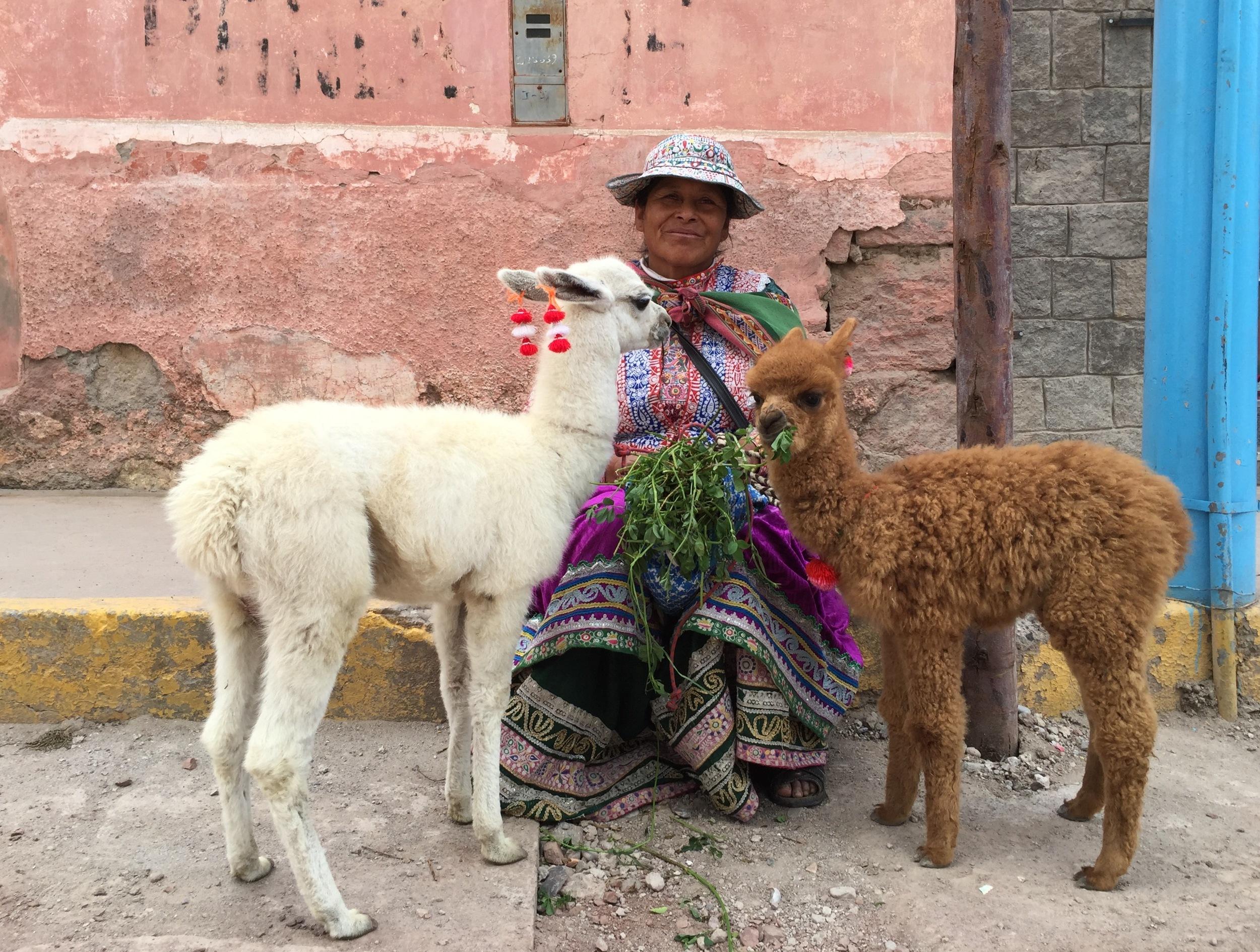 På torget i landsbyen Chivay i Colcadalen møtte jeg denne indianerkvinnen med en lamababy til venstre og en alpakkababy til høyre.