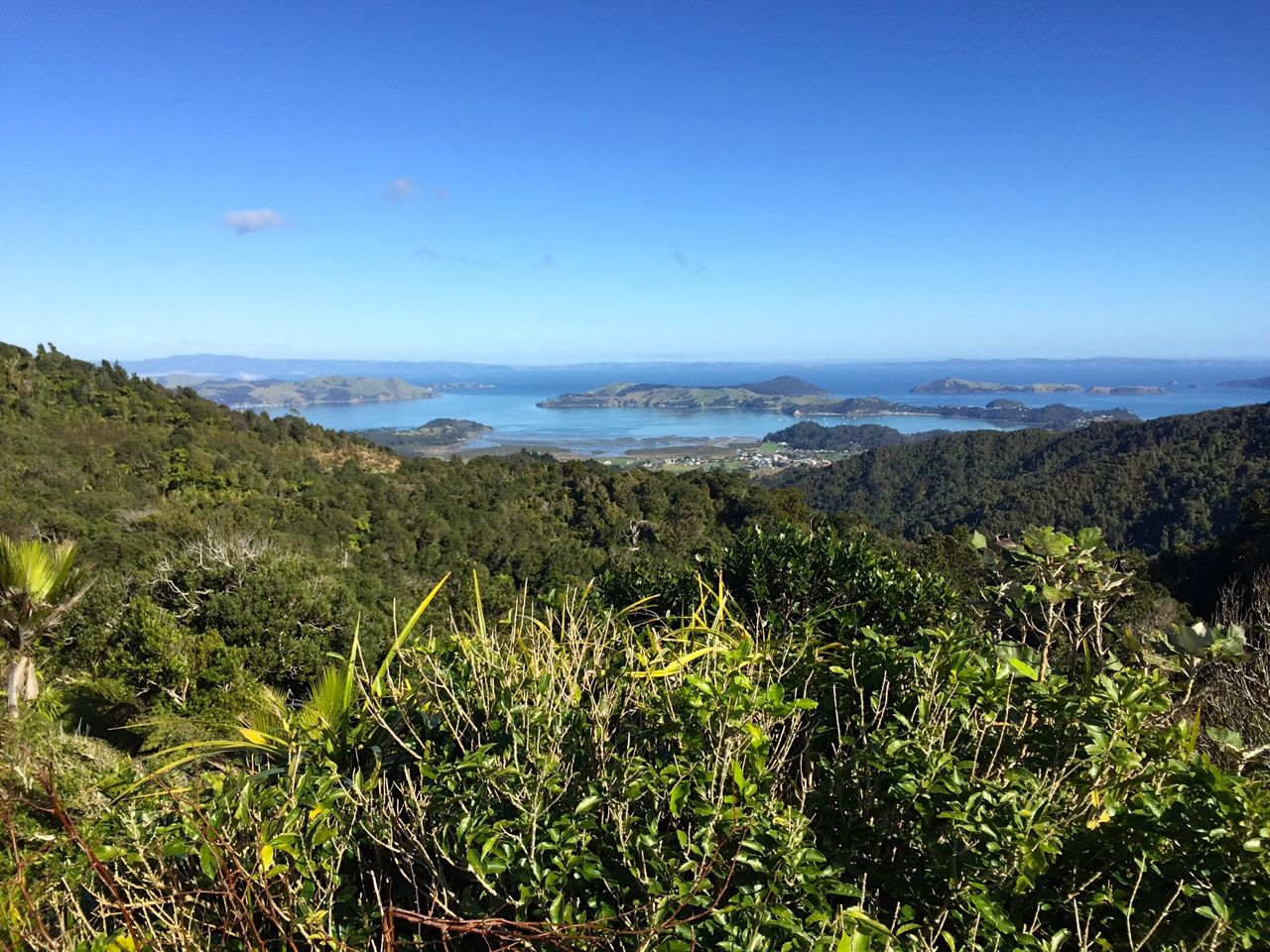 I know it looks like a postcard but I took this picture with my phone. That's the South Pacific in the distance.