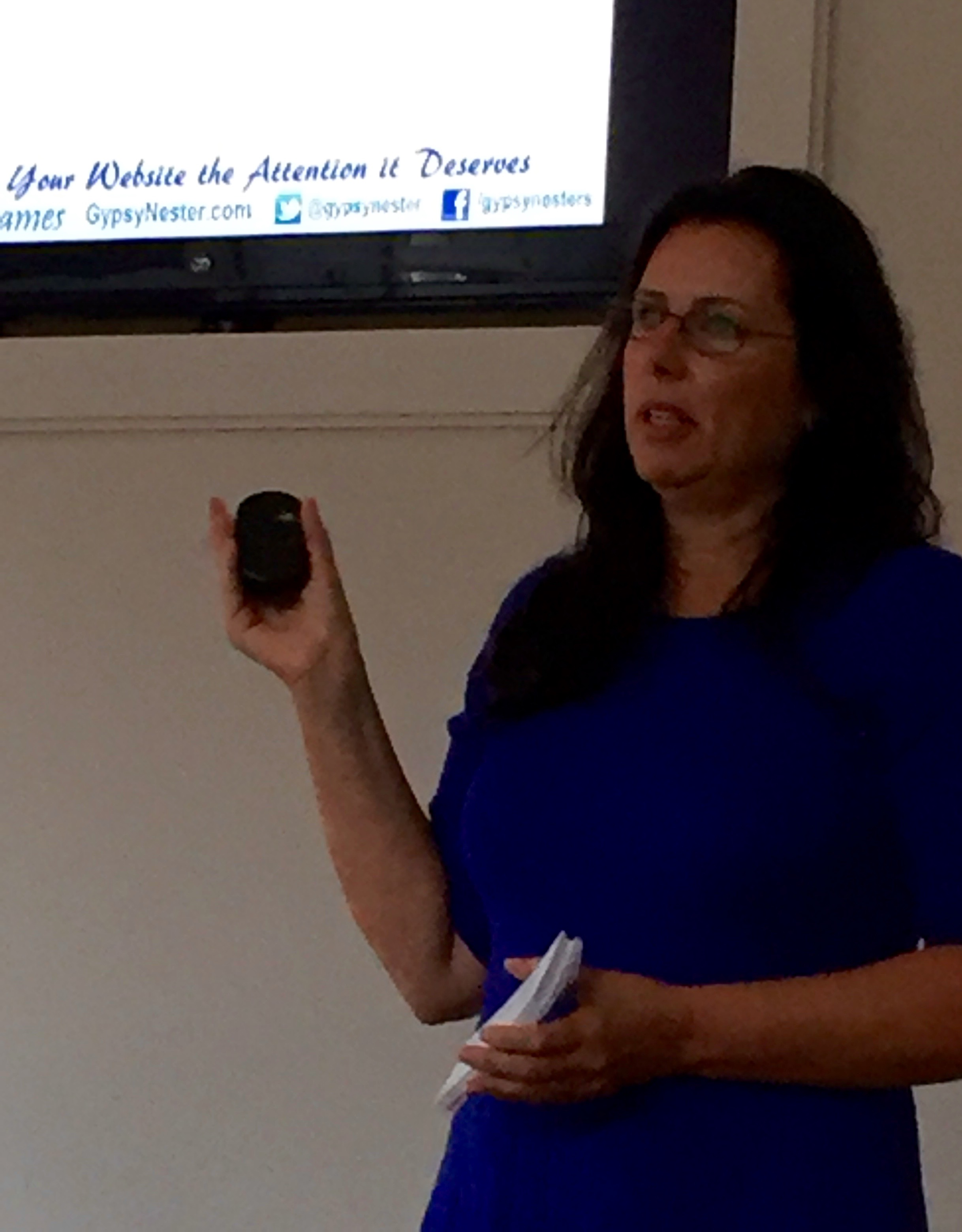 """Veronica James, author of """"Going Gypsy"""", during her talk """"Getting Your Website The Attention It Deserves"""""""