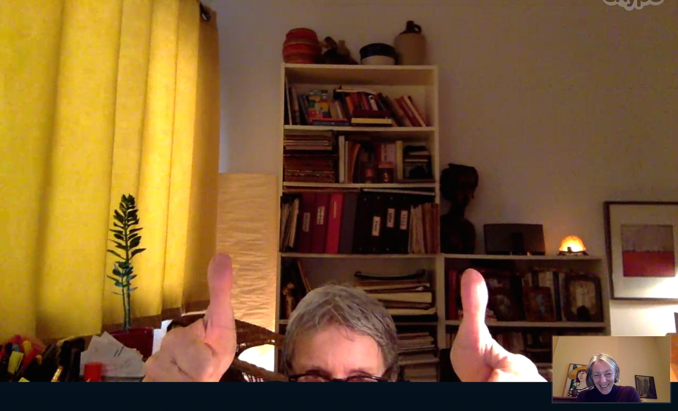 Screengrab of the elusive Mudd Lavoie giving me two thumbs up after I pitched to her over skype