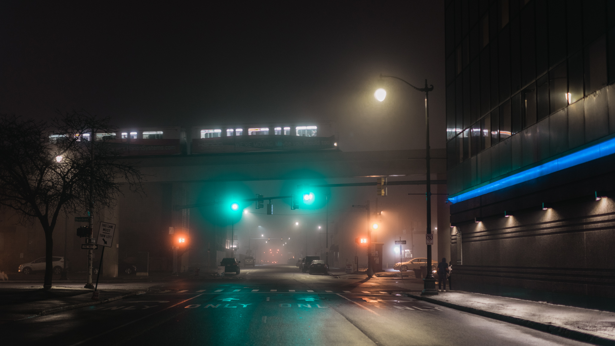 Fog-106.jpg
