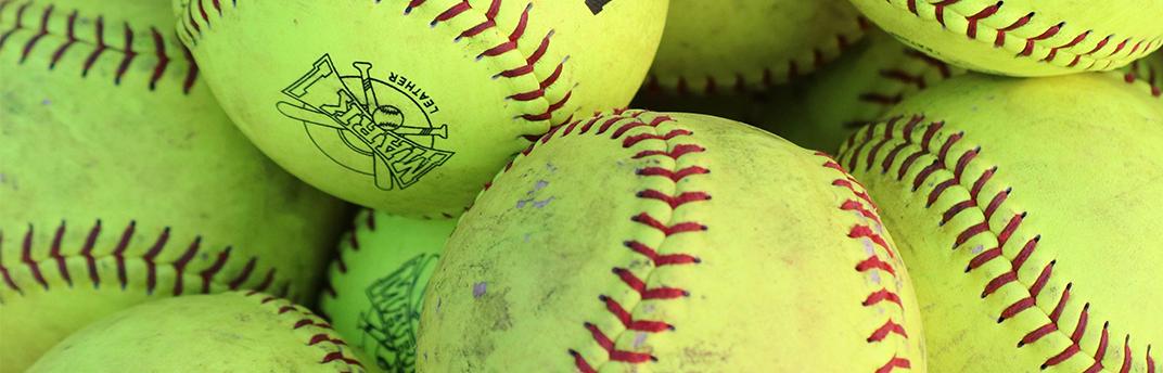 Softball Picnic 3.png