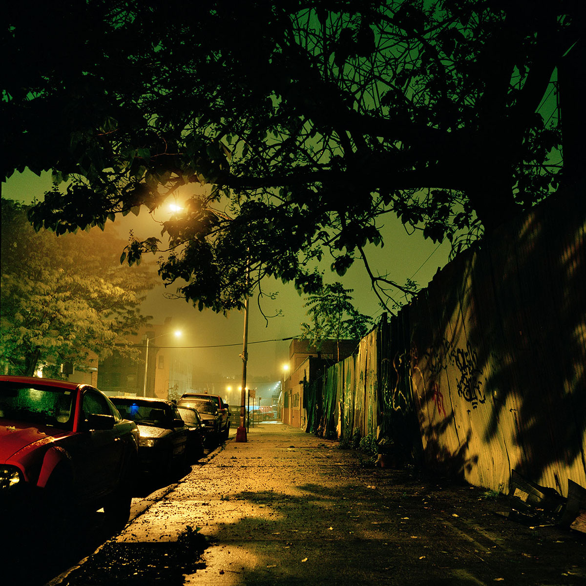 01-Draskoczy-StreetJungle.jpg