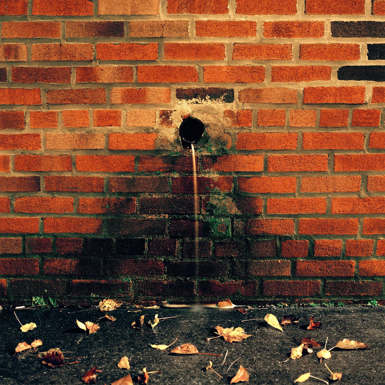 Gowanus_Wild_Water_Hole.jpg