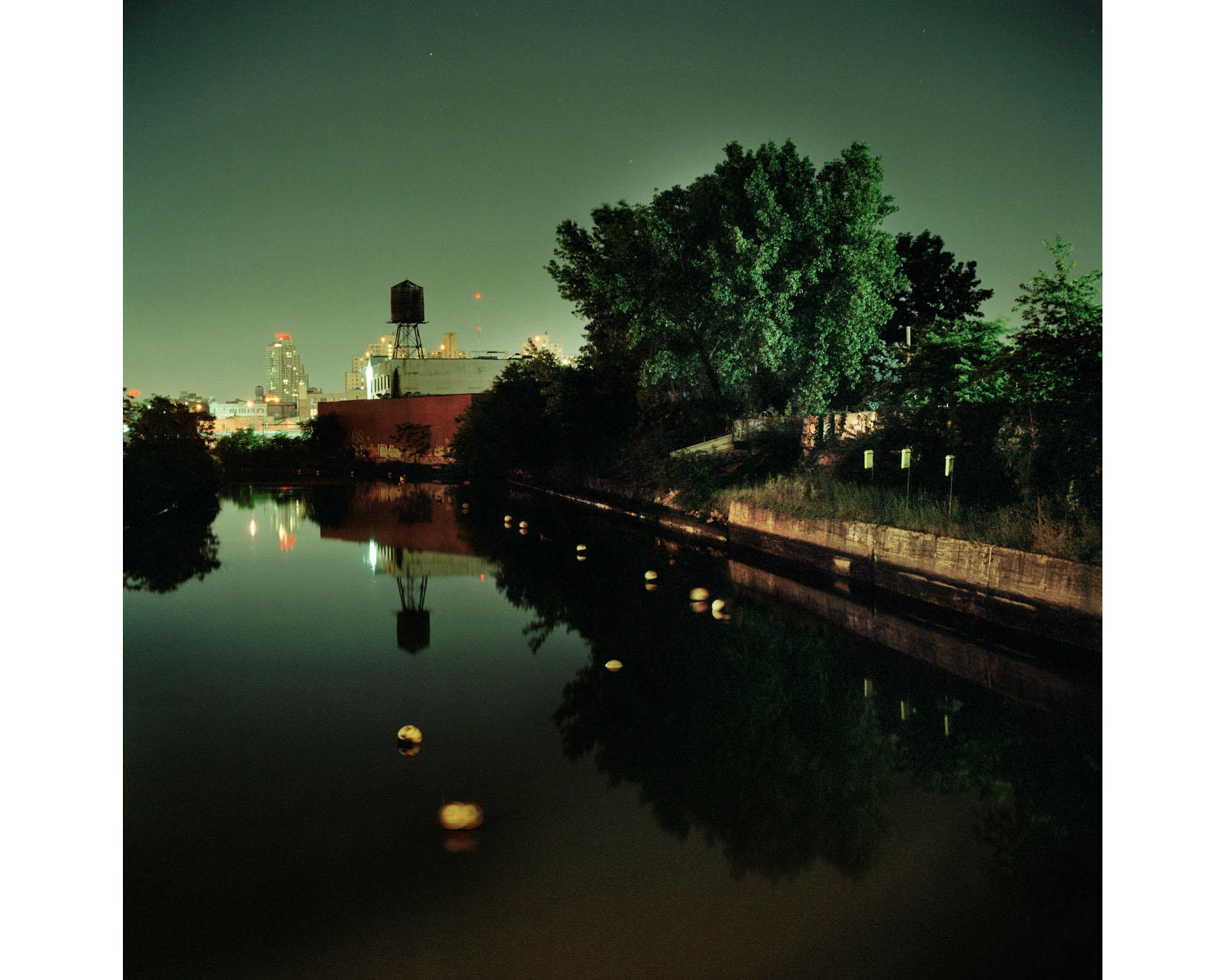 Miska_Draskoczy_Gowanus_Wild_green_canal rect2.jpg