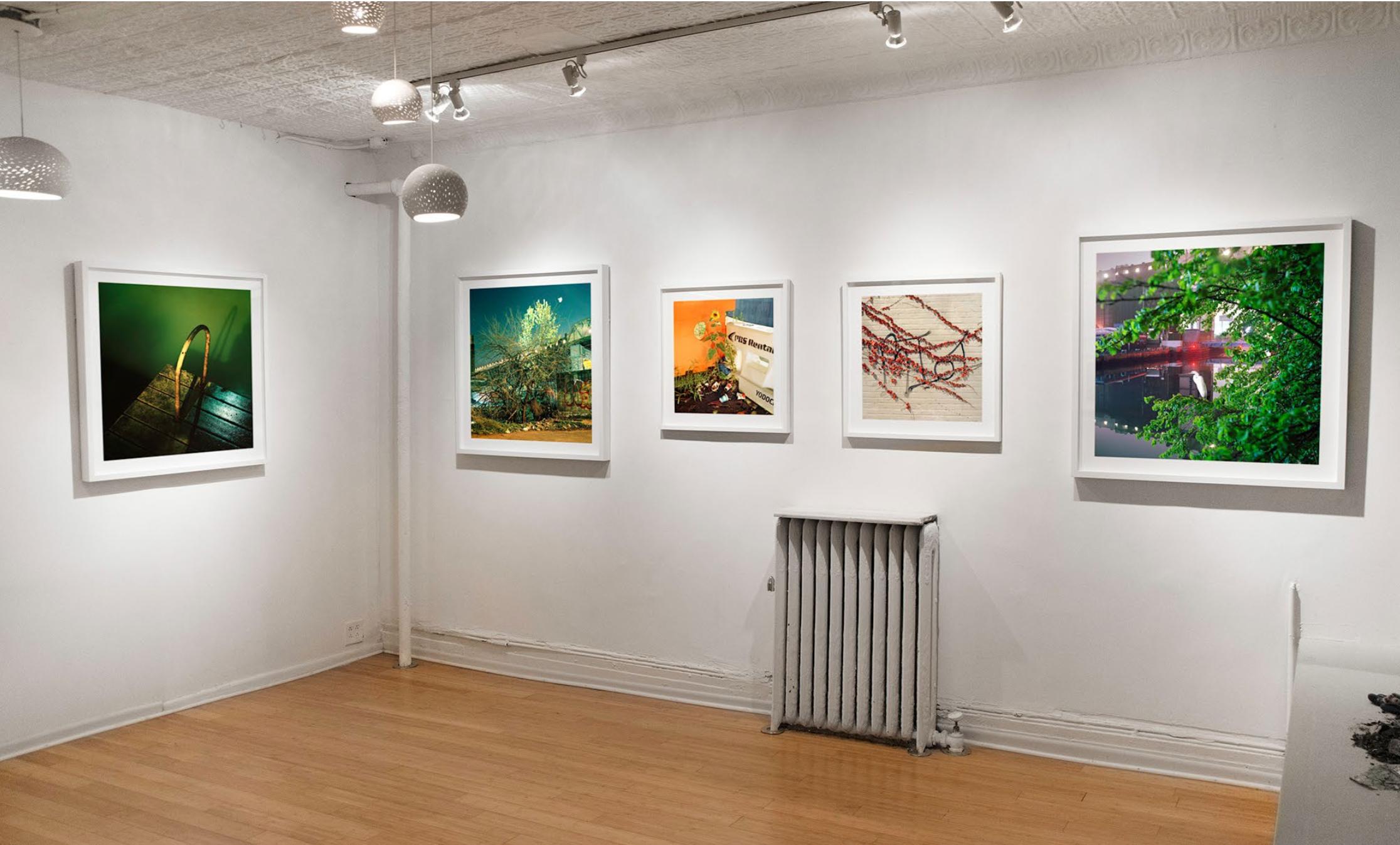 Gowanus Wild , Ground Floor Gallery, 2014