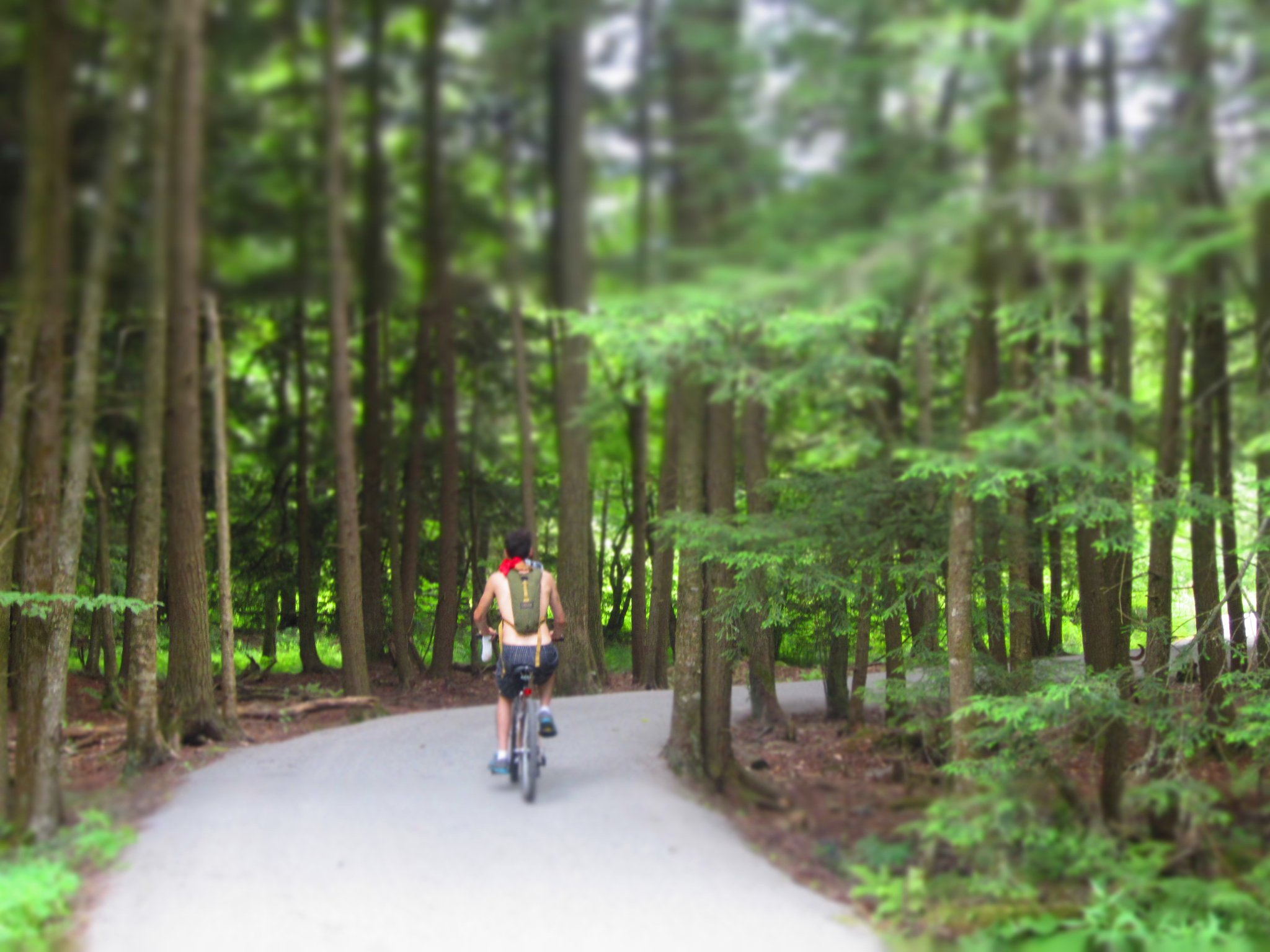 trail bike nick.jpg