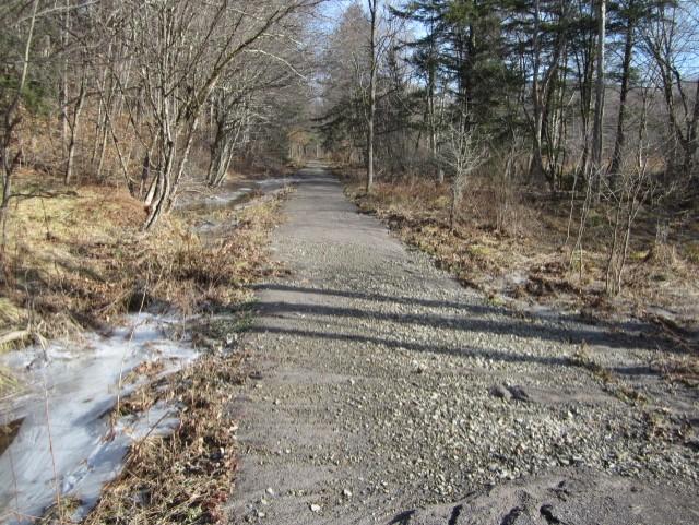 Jan 2017 trail damage 4.jpg