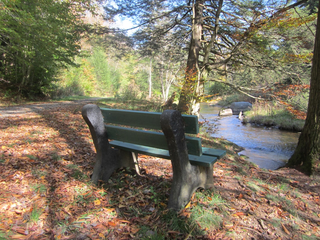 bench autumn.jpg