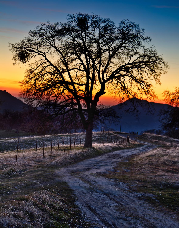 West Sierra Sunset