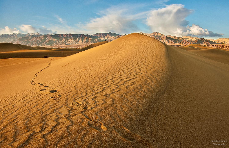 Tracks in the Sand: Mesquite sand dunes.