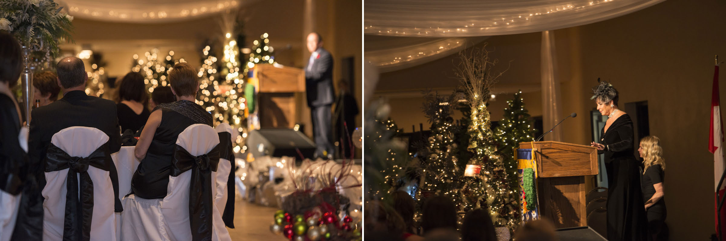 Festival of the trees_Page_16.jpg