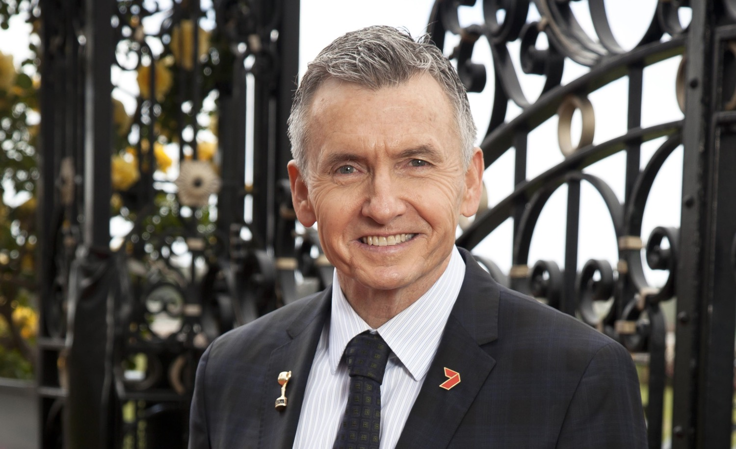 Bruce McAvaney  image source -  The West Australian