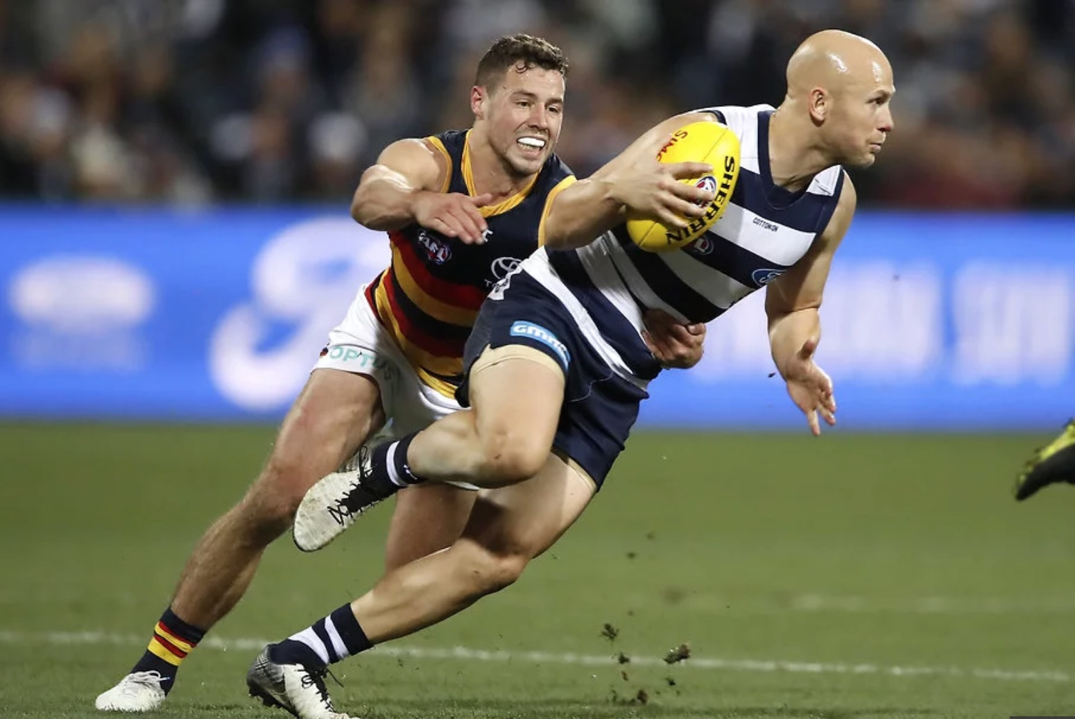 The highest rating fixture on the weekend was the Geelong v Adelaide clash on Friday night  image - Geelong Advertiser