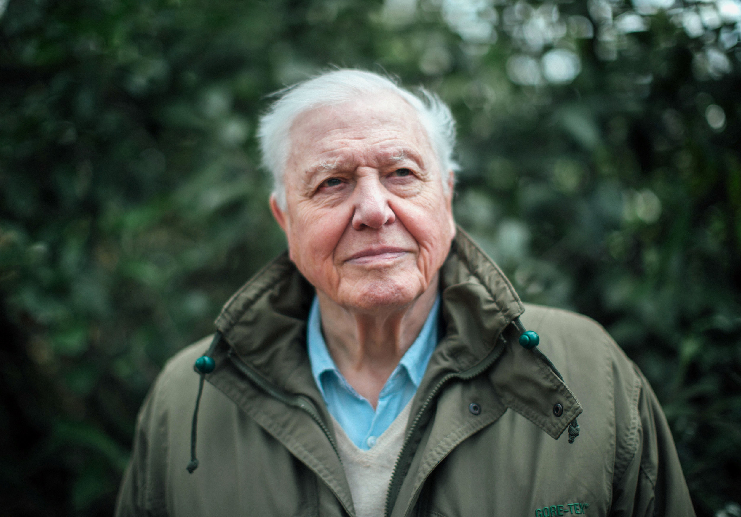 Climate Change: The facts with Sir David Attenborough  Image - ABC