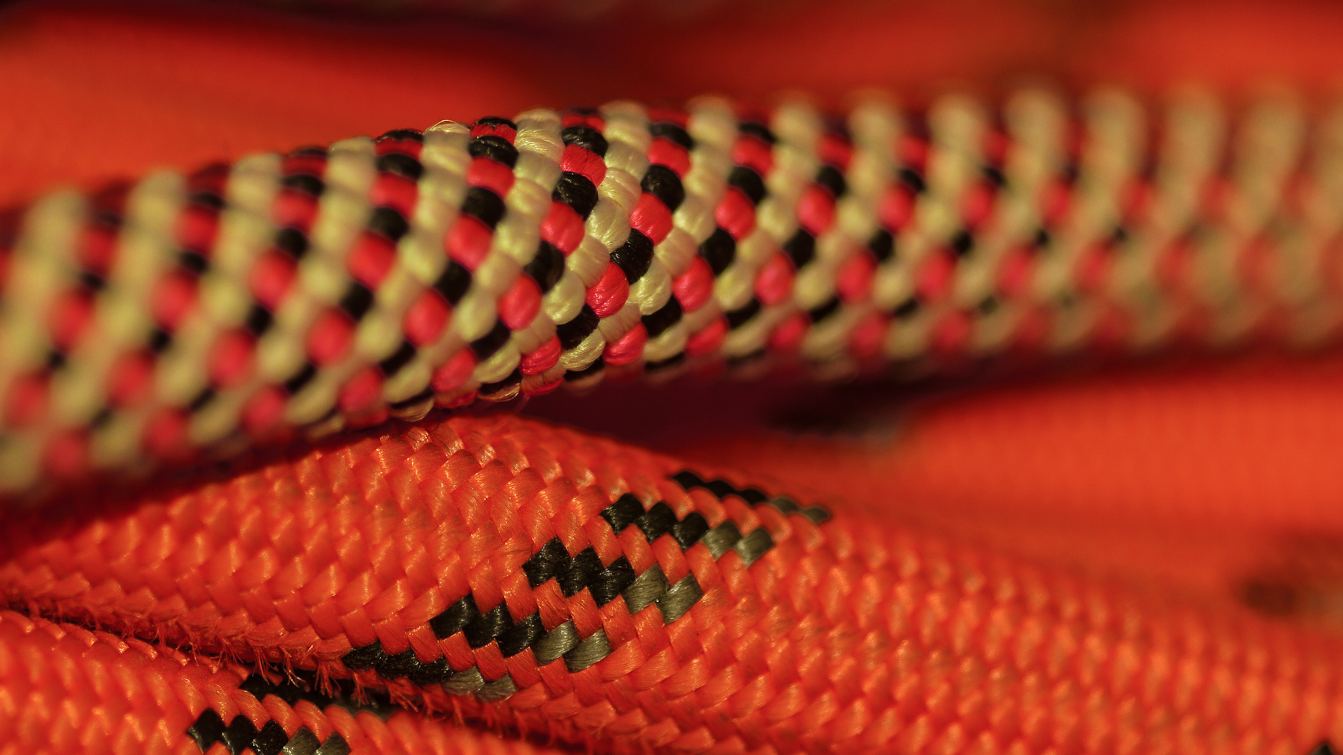 January 9th - Wanted to take a photo of rope up close. I always carry some with my when I go hiking, because I have a habit of getting into shenanagins.