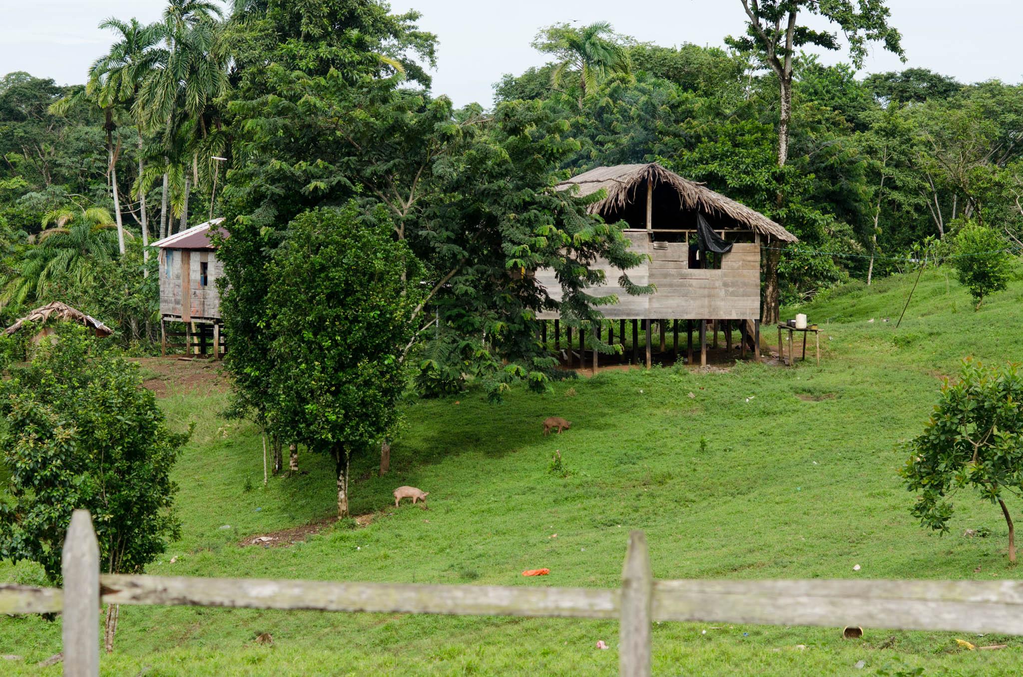 Village Life, Bangkukuk, Nicaragua - photo, Tom Miller