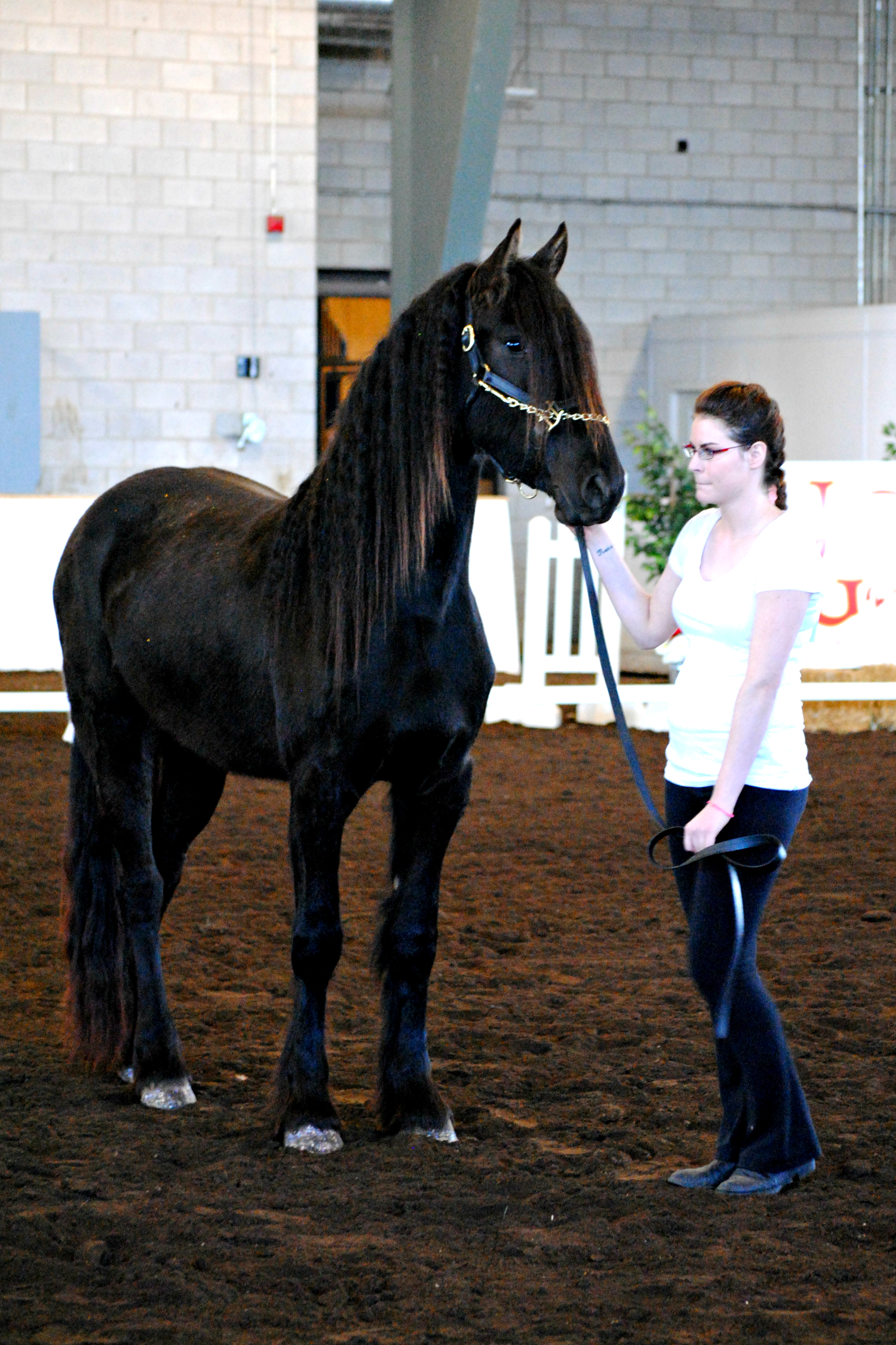 Year End Horse Show