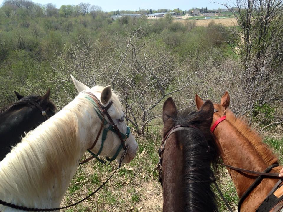 Trail Ride - overlooking REACH.jpg