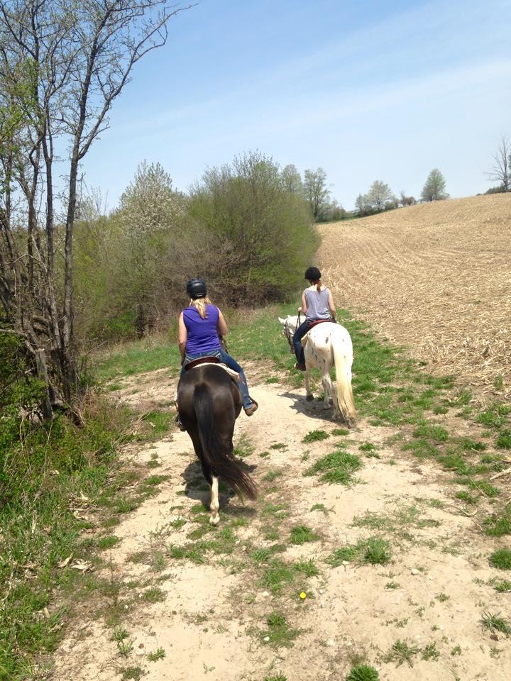 Trail Ride - walking.jpg