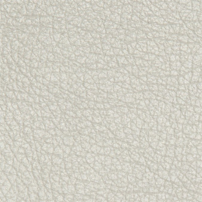 Pearlescent Italian Leather: Quartz