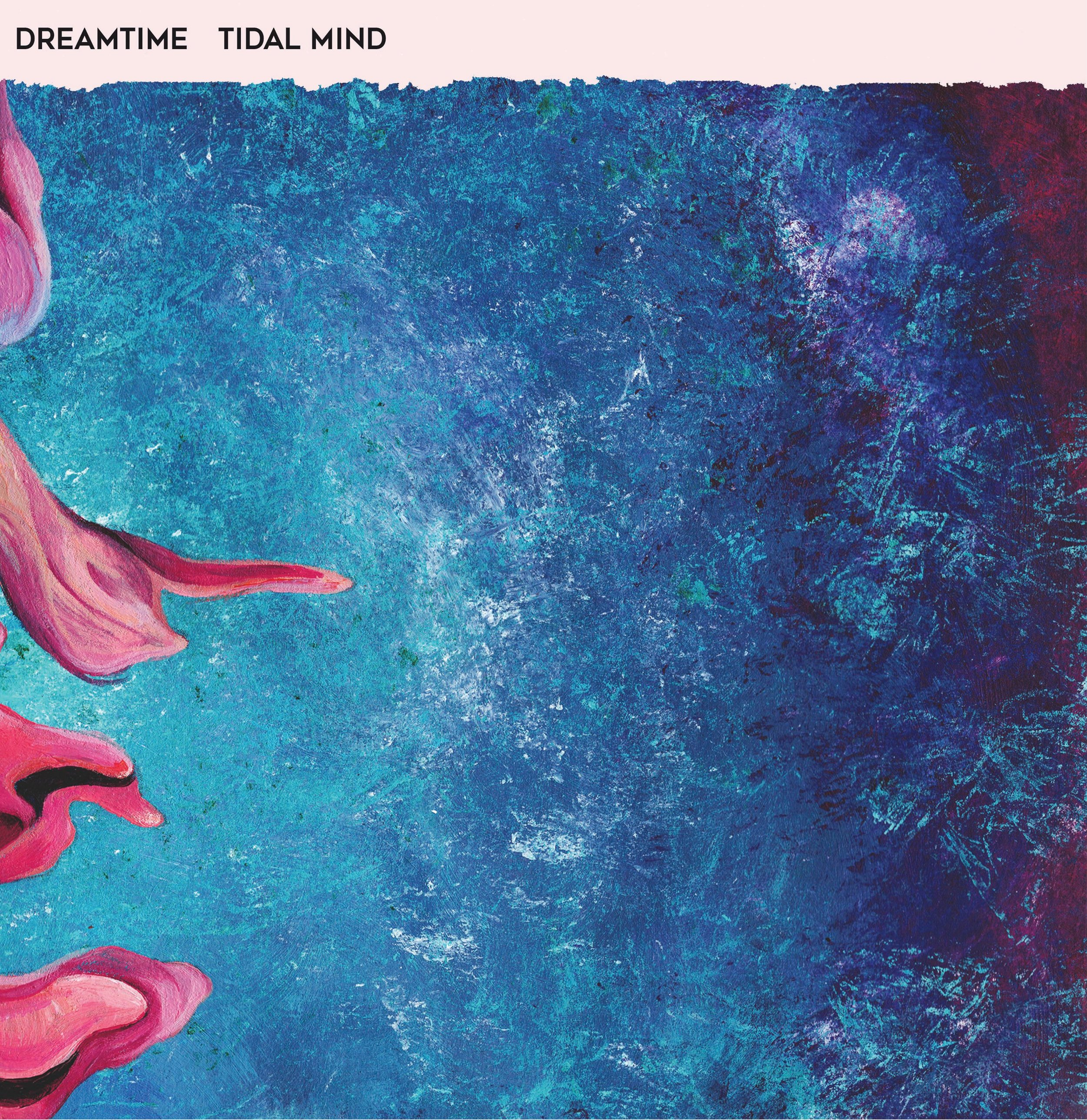 Dreamtime - Tidal Mind coverSM.jpg