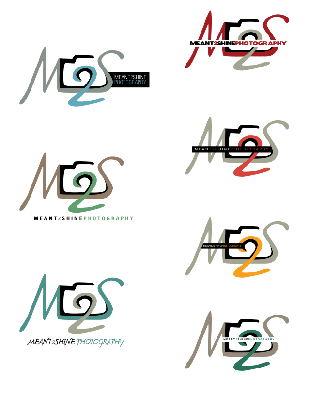 one of the choices for my business logo to be placed on cards leave behinds and anything else Meant 2 Shine